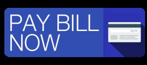 PAY BILL BLUE